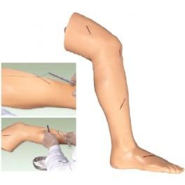 ADVANCED SURIGICAL SUTURE LEG