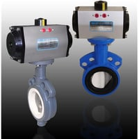 Butterfly Valves With Pneumatic Rotary Actuator