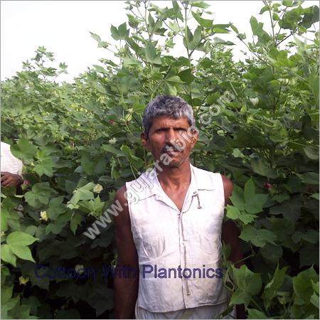 Plantonics Granules