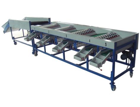 Food Grading Machine