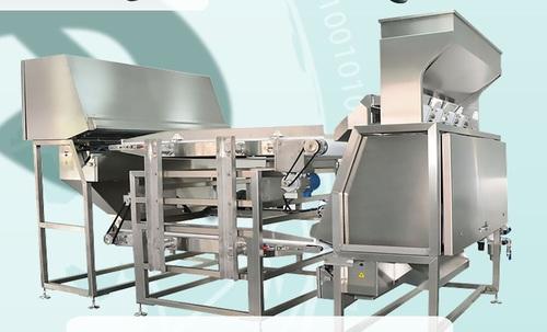 Garlic Machinery