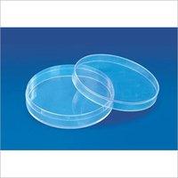 Petri Dish (Culture)