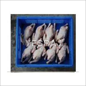 Fresh Frozen Poultry Meat