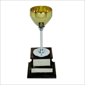 Gold Plated Sports Cup