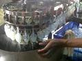 Mango Water Filling Sealing Machine