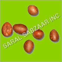 Tree Seeds & Shrub Seeds