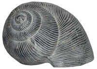 Aluminium Shankh