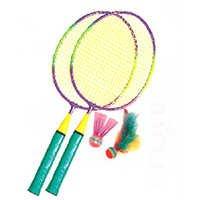 Badminton Rackets and Cocks