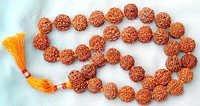 Rudraksha Japa Mala 5mm Beads