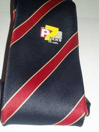 Logo Printed Red Blue Corporate Ties