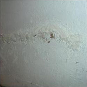 Anti Fungal Coating Services