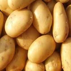 Sugar Free Big Potato