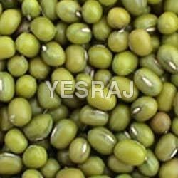 Green Mung Bean