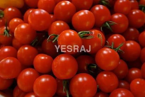 Round Cherry Tomato