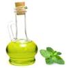Mint Oils