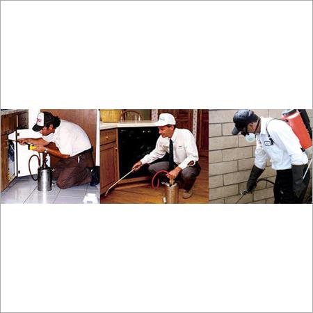 Pest Control Service