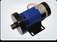 Treadmill Electric Motor