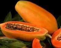 Spray Dried papaya-powder