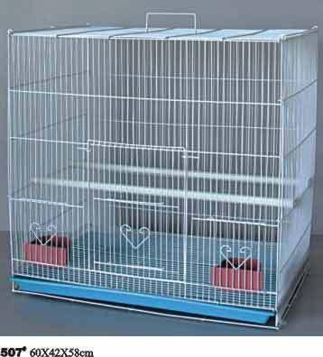 Birds Cage 507