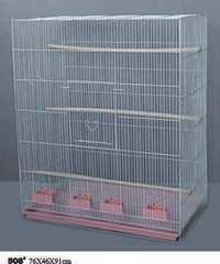 Birds Cage 508