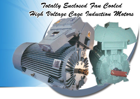 Induction Electric Motor