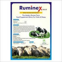 Sheep Feed Supplements