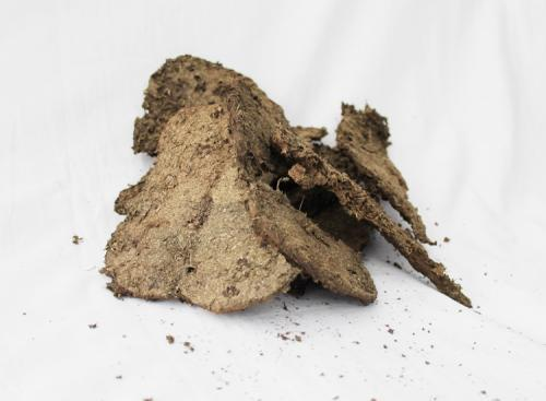 Dry & Cow Dung