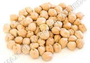 GRAM BIG WHITE (CHICK PEA)