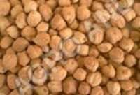 GRAM RED (CHICK PEAS)