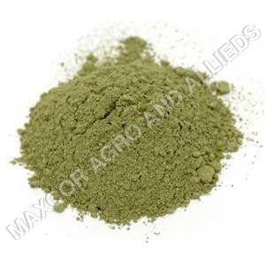 DRY MUSTARD EAF POWDER