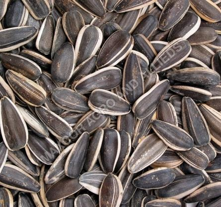 Agro and Agricultural Seeds