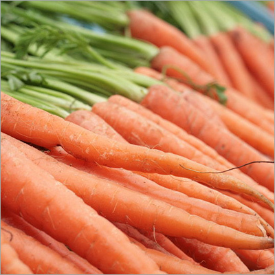 Indian Red Carrot