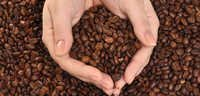 Coffee By-Products Testing