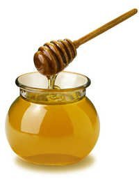 Honey Testing Services