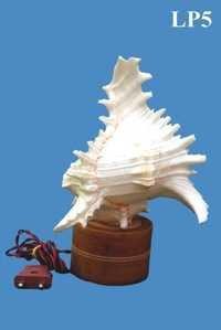 Murex Lamp