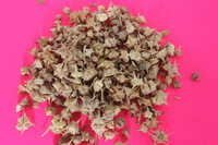 Tribulus Terrestsis Fruits Extract