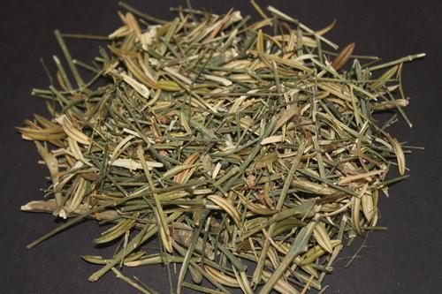 Andrographis paniculata Herb