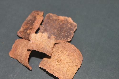 Holarrhena Antidysentrica Bark