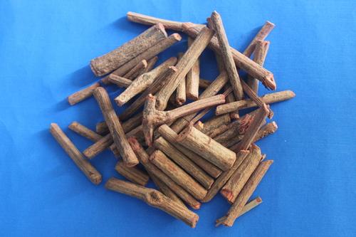 Rubia cardifolia Stems