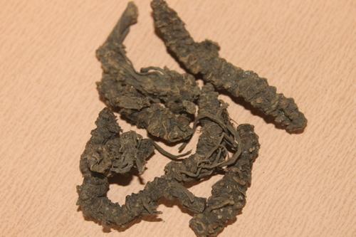 Valerian Wallachi Roots Extract