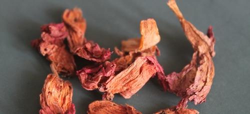 Hibiscus Rosa Sinensis Flowers