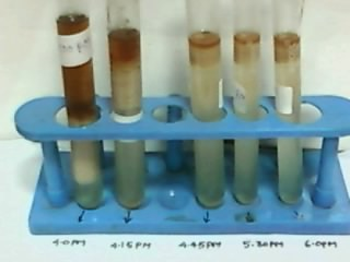 DIFFERENT STAGES SAMPLES OF SOLUTION
