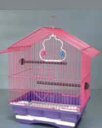 YP Bird's cage 101