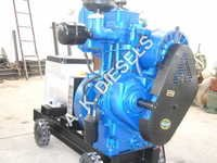 Customized Diesel Engine