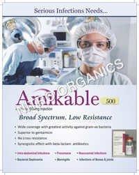 Antibiotics Amikable 500