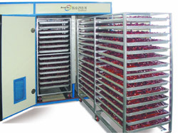 Industrial Drying Oven/Tray Dryer