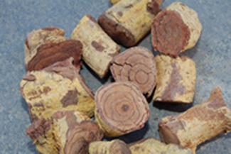 Salacia Reticulata Bark