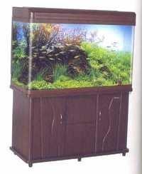 MJ Aquarium R6 1812