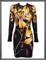 Ladies Floral Printed Dress