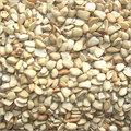 Tamarind Seed Dhall Brokens